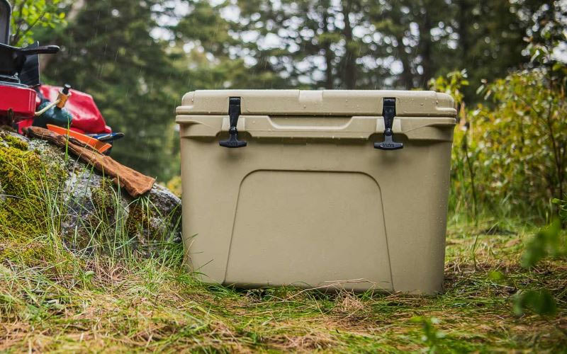 cooler-camping-food-safety