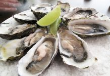 raw-oysters-food-safety-shellfish