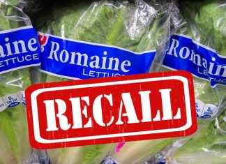 food_recall_safety