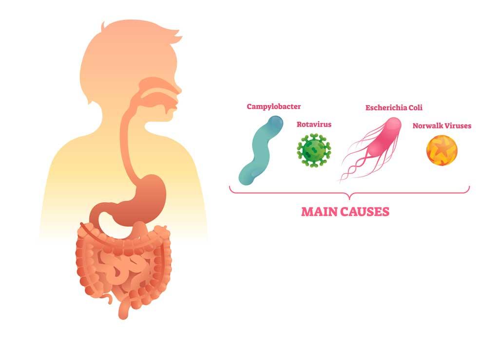 bacteria_virus_food_hazards_contamination_safety_illness