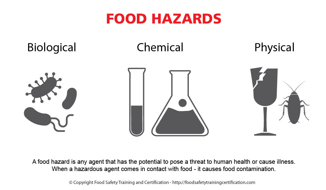 Introduction to Biological Food Hazards