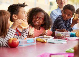 children_school_lunch_sandwich_food_safety_illness