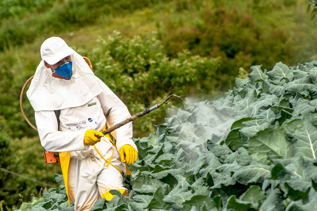 chemicals_dangerous_pesticides_pollution_food_safety_illness