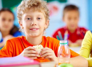 children_school_lunch_sandwich_food_safety_illness