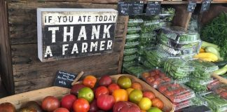 farmers-market-food-safety8
