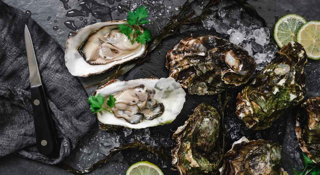 shellfish_oysers_norovirus_ecoli_vibrio_food_safety_illness