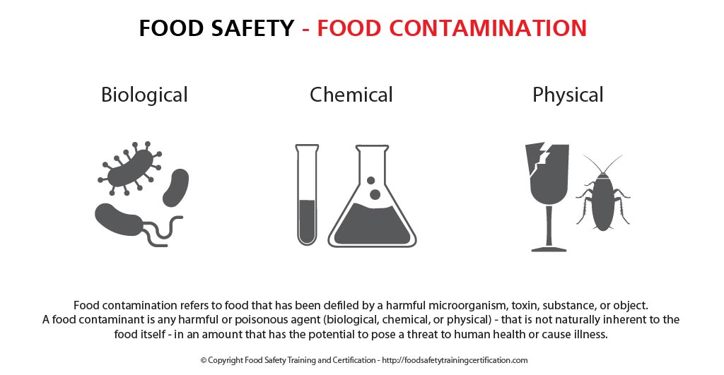 food_contamination_food_safety