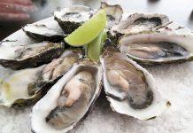 raw-oysters-food-safety-shellfish