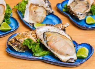 shellfish_oysers_norovirus_ecoli_vibrio_food_safety_illness